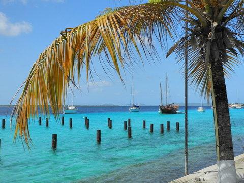 Bonaire Harbor