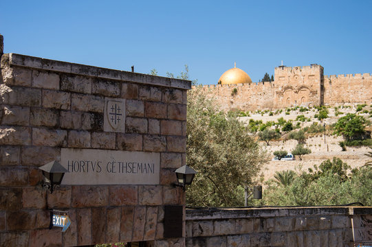 Close up of the entrance of Gethesemane and in the background a view on the golden gate and the golden dome in Jerusalem Israel