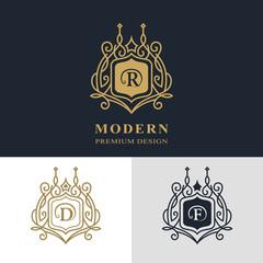 Monogram design elements, graceful template. Calligraphic elegant line art logo design. Letter emblem sign R, D, F for Royalty, business card, Boutique, Hotel, Heraldic, Jewelry. Vector illustration