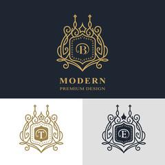 Monogram design elements, graceful template. Calligraphic elegant line art logo design. Letter emblem sign B, T, E for Royalty, business card, Boutique, Hotel, Heraldic, Jewelry. Vector illustration
