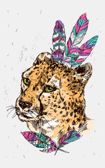 hand-drawn illustration cheetah