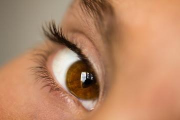 Closeup of brown eye