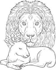 Lion Watching Over Sleeping Lamb Drawing