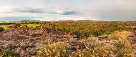 Rocky Escarpment and golden grasses  at Ubirr Rock, Kakadu National Park, NT, Australia