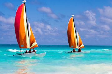 Catamarans on the ocean