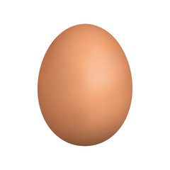 vector realistic brown egg. Isolated egg on white background.