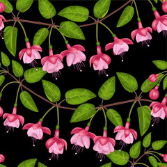 Fuchsia Seamless Pattern