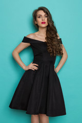 Elegant Beautiful Young Woman In Black Cocktail Dress