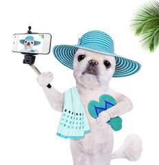 Beautiful  dog with flip-flops taking a selfie together with a smartphone. Isolated on white.