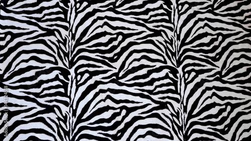 Sfondo zebrato bianco e nero