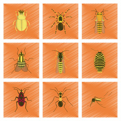 assembly flat shading style illustration insect honey wasp soldier bug ant mosquito scarab Araneus bee fly