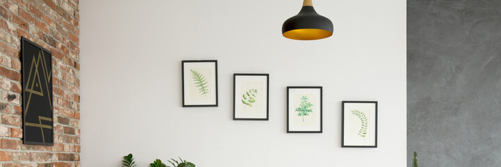 Wall with pictures of plants
