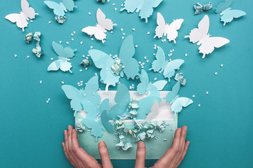Butterflies freedom