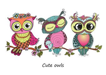 Three cute colorful owls sitting on tree branch
