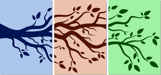 Tree branch.