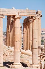 Jerash, Giordania, 04/10/2013: le colonne ioniche del Foro ovale del Cardo Massimo nell'antica Gerasa, uno dei siti di architettura romana meglio conservati al mondo