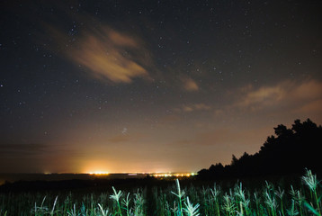 The night the starry sky. Cornfield. Night Photography. Astrophotography