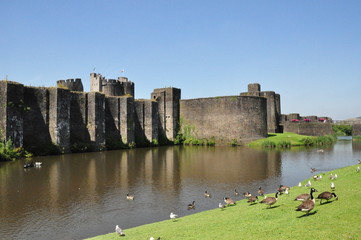 Caerphilly Moat