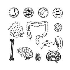 immune system icon set