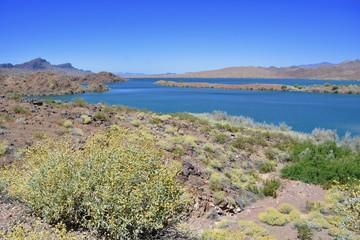 Bill Williams River National Wildlife Refuge Lake Havasu Arizona