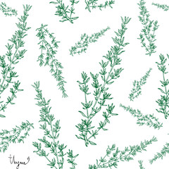 thyme plant seamless pattern