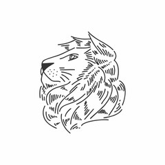 lion head icon logo line drawing