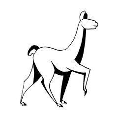 Vector image with llama's movement