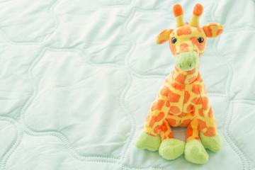 giraffes cute is seating on green fabric,Baby giraffes
