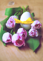Easter egg and pink tulip flowers - toned image, closeup, selective focus, greeting card.