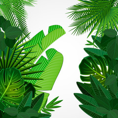 Tropical leaves border on isolate background.