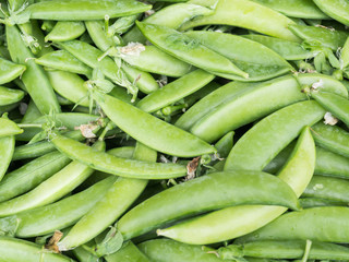 Abstract and closeup of green beans background.