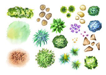 Big hand drawn garden plants set. Elements of landscape design. Watercolor