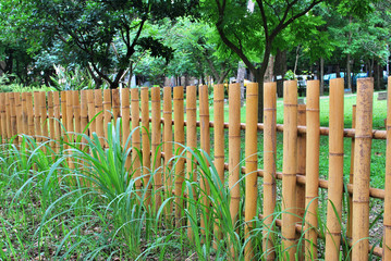 Bamboo fence in the garden