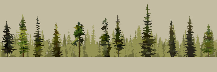 cartoon background of green pine forests with spruces