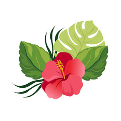 Bouquet with tropical flowers. Elegant floral vector composition. Colorful cartoon illustration