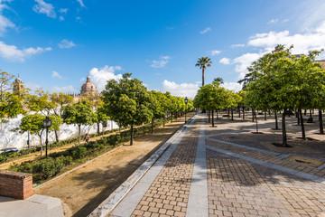 Streets and architecture in Jerez de la Frontera,Spain