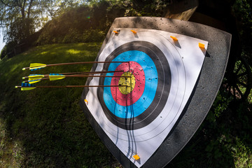 Fish-eye view of archery practice target with arrows