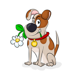 Dog With A Flower