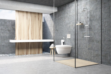 Dark gray shower interior