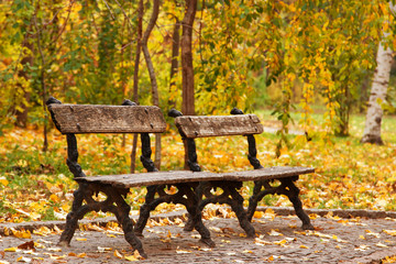 Two empty autumn benches in park