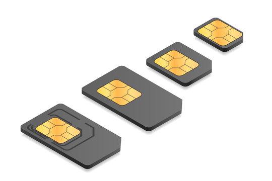 Isometric illustration of different sim card types: mini, micro, nano.