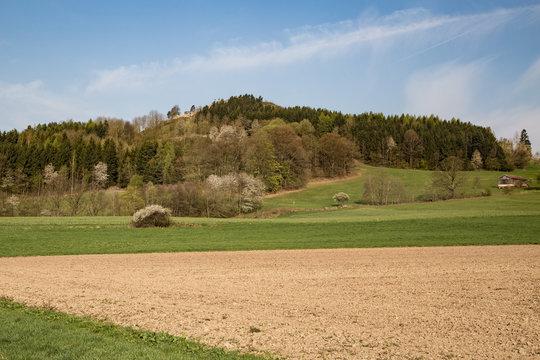 Waldecker Schloßberg