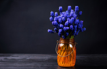 Hyacinth flowers in an orange vase