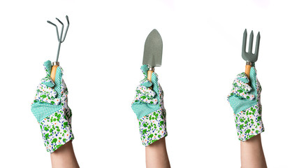 Hands in garden gloves holding gardening tool