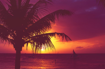 Silhouette palm tree sailboats sunset faded filter