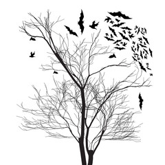 Vector graphics of trees and bats