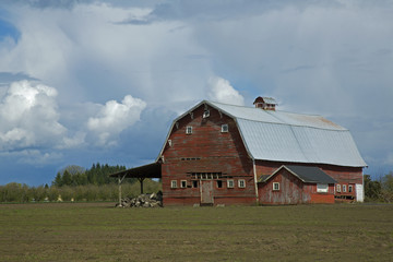 Old Rustic and Weathered Red Wooden Barn in the Country, Green Field, Trees in Background, Vivid Blue Sky with White Clouds, Daytime  - Oregon (HDR Image)