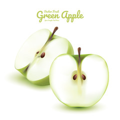 Green apple half isolated. fruits vector illustration. Modern style realistic