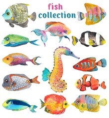 Watercolor Sea Life, fish, sea horse, beautiful collection