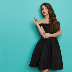 Charming Elegant Woman In Black Cocktail Dress